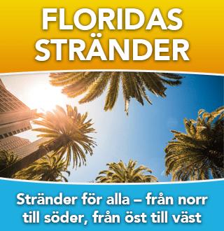 Floridas Stränder